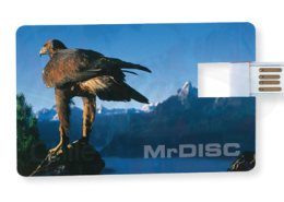 New-Business-USB-Card